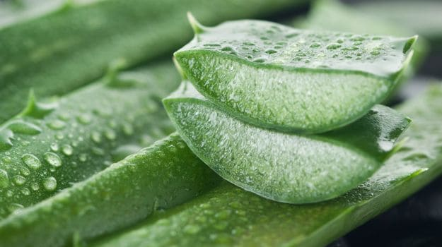 What Happens To Your Body When You Take Aloe Vera Every Day