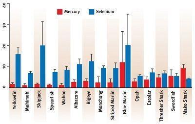 Selenium and mercury in fish