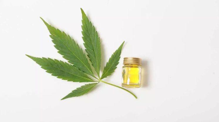 Benefits and Risks of Marijuana (THC, CBD and forms of consumption) ⋆ Revolutionary Fitness
